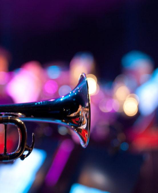 Die Jazzinitiative präsentiert: Markus Stockhausen Wild Life